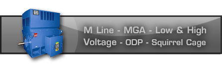 M Line - MGA - Low and High Voltage - ODP - Squirrel Cage