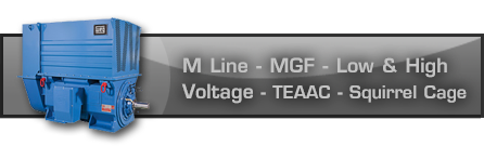 M Line - MGF - Low and High Voltage - TEAAC - Squirrel Cage