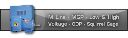 M Line - MGP - Low and High Voltage - ODP - Squirrel Cage