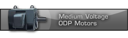 Medium Voltage ODP Motors