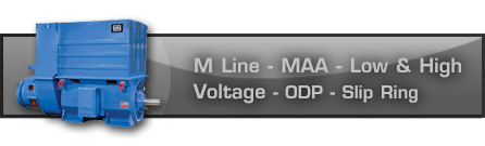 M Line - MAA - Low and High Voltage - ODP - Slip Ring