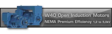 W40 Open Induction Motors - NEMA Premium Efficiency 1, 2 to 5,okV