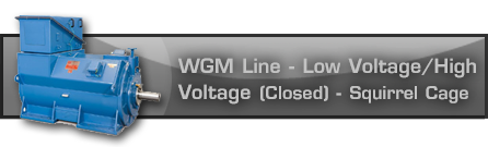 WGM Line - Low Voltage/High Voltage - (Closed) - Squirrel Cage WGM Line - Low Voltage/High Voltage - (Closed) - Squirrel Cage